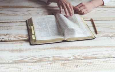 Sessions Journey through the Bible in a Year